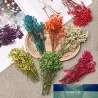 1 Çanta Gerçek Sıkıştırılmış Kuru Çiçekler Çiçek Bitkiler Renkli Kristal Çim Babysbreath için DIY Scrapbooking Kart Art Craft Ara Yapımı