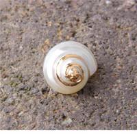 22 * 14-26 * 16 mm 5 Pzs Natural Spiral Shell Charm Pendants Pendants Conch a Gold casuale per la creazione di gioielli Braccialetto per collana fai da te Jllyjq