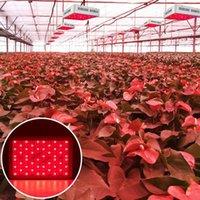 1500W 높은 강도 LED 듀얼 칩 380-730nm 전체 빛 스펙트럼 LED 식물 성장 램프 화이트 성장 조명