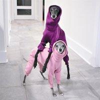 Collier High Collier Vêtements de chien Accessoires Hood Pet Multi Color Chiot Vêtements Chaud Ropa Para Perros Fashion Nouvelle arrivée 27lm G2