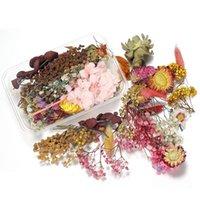 1box mélange de mélange style desséché de fleurs séchées décoration naturel autocollant floral beauté ongles décalcomanies époxy moule bricolage bijoux h jlldqr