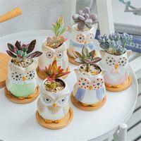 Creative Ceramic Gufo Forma Fiori Pentole Nuova piantatrice in ceramica Desk Flower Pot Cute Design succulente piantatrice