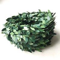 DIY المواد Garlands مهرجان الطعام غرفة الطعام الديكور الأخضر يترك ديكور المنزل البلاستيك الحديد سلك الرثان الساخن بيع 2 7QL L1