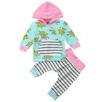 Giyim Setleri Doğan Bebek Çocuk Bebek Kız Erkek Bodysuit Kazak Toddler Çiçek Kapüşonlu Tops + Pantolon Kıyafetler Giysileri 0-3T1