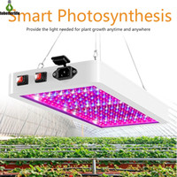 LED Cultive Light 1000W 2000W Phytolamp 2835 LEDS Chip Phyto Crecimiento Lámpara 85-265V Iluminación de planta de espectro completo para planta interior