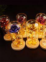 Artificiale Eternal Rose Enchanted Flower con LED Light Valentine's Day Festa della mamma Compleanno Regalo di Natale JK2101XB