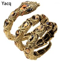 Yacq Stretch Snake Bracelet Brazalete Brazo superior Brazalete Mujer Punk Rock Crystal Bangle Joyería Oro Plata Color Dropshipping A321