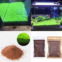 Aquarium растение семян рыбы аквариумное водное растение семян легко аквариум ландшафтный декоративный1