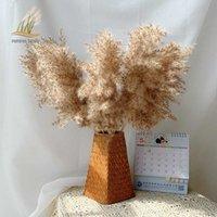 Pampas Çim Bitkileri Ev Düğün Dekoru Kurutulmuş Demet Tüy Çiçekler Doğal Phragmites Tall 20-22 Plastik Vazo T200703