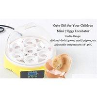 Mini 7 uova incubatore incubatore di pollame incubatore Brooder temperatura digitale vibratrice per macchinetta per pollo Qylabx Toys2010