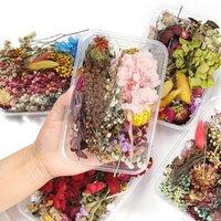 1box mélange de mélange style desséché de fleurs séchées décoration naturel autocollant floral beauté ongles décalques époxy moule bricolage bijoux h jllurn
