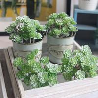 24 teste pianta artificiale falso succulente paesaggio terra terra loto rare piante fiore fai da te casa giardino decorazione di nozze