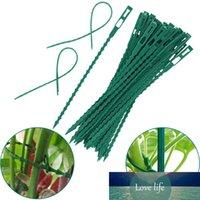 30 unids Planta Planta Cable Lazos Lazos Reutilizables Jardín Terreo Escalada Cultivo Soporte Ajustable Fishbone Spur Tie Herramientas Jardín
