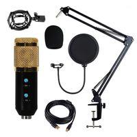 Kit de microfone com suporte de braço para o estúdio de áudio usb fonte de alimentação de música preta gravação condensador microfone cantilever suportes1