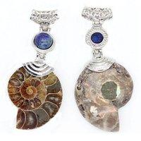 Natural Ammonite Seashell Fósseis Fóssil Snail Pingentes Mix-Cristal Pedra Oceano Conch Reliquiae Pingente Para As Mulheres Colar Jllvegg