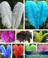 Alta calidad Hermoso plumas de avestruz 40-45cm / 16-18 pulgadas de la selección de U en color central de la boda Decoración