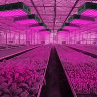 1200W 100 * 10W Neues Vollspektrum 3030 Lampe Perlen Pflanzungslampe Einzelsteuerung Schwarzes Premium-Material wachsen Licht