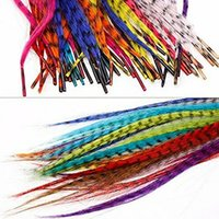 35 Synthetische Federn Haarverlängerungskit +100 Perlen + Eine Zange +1 Haken Feder-Hin- und Herbeziehungen