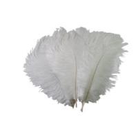 50 pçs / lote natural avestruz branco penas 15-75cm decoração de plumagem de festa de casamento colorido decorativo