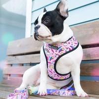 프랑스 불독 하네스 가죽 끈 인쇄 된 Frentie 가역 하네스 강아지 작은 개 메쉬 조끼 가죽 끈 걷는 훈련 201126