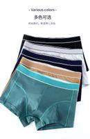 Designer Brand Mens Boxer Uomo Uomo Strantants Brief For Man Lederweans Sexy Biancheria intima Underwear Mens Boxer in cotone biancheria intima pantaloncini maschio