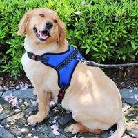 Colliers de chiens Laisses Harnais solides réglables Grands chiens Harnais Harnais Designer Marcher et entraînement Accessoires de laisse pour animaux de compagnie