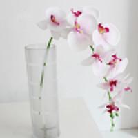 Künstliche gefälschte Seidenblumen Phalaenopsis Schmetterling Orchidee Hochzeit Wohnkultur