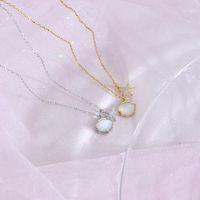 Shell Starfish cz collana donna 100% 925 argento sterling nacklace gioielli di moda clavicola catena ciondolo charms per le donne regalo1
