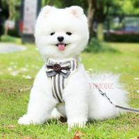 Dog Collars Riemen S-L verticale strepen borstharnas voor kleine puppy bloem stropdas boog harnassen vesten met touw ademend raster huisdieren honden