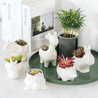 Pentola di fiori ceramica Pianta pianta succulente Forma Piantatrici Pots Vaso da fiori per Home Office Giardino Desktop Decor Bonsai Y200723