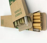 Natural Green Bamboo Straw 20cm Phyllostachys Heterocycla Personalidad con cepillo Reutilizable Artefacto Paja Eco Friendly New 8 9NT F2