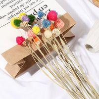 15 adet / paket doğal bitki kaynaklanıyor Gerçek çilek çim kurutulmuş çiçek buketi çiçek aranjmanı hediye parti düğün ev dekor