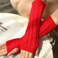 Cinco dedos luvas de moda designer 6 cores flores sem dedos dedos longos guanti invernali mulheres luvas de inverno1