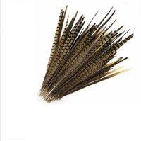 2021 all'ingrosso 100pcs / lot Belle piume di coda di fagiano naturali 40-45cm / 16-18 pollici