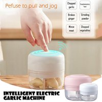 Electric Mini Food Garlic Vegetable Chopper Grinder Crusher for Nut Meat Fruit Rechargeable Onion Multi-function Processor #GM Y1204