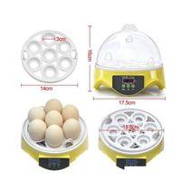 Mini 7 uova incubatore incubatore di pollame incubatore Brooder temperatura digitale Aubather macchine hatcher per pulcino qyluro new_dhbest