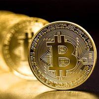 Yaratıcı Hatıra Altın Kaplama Bitcoin Sikke Tahsil Büyük Hediye Bit Sikke Sanat Koleksiyonu Fiziksel Altın Hatıra Sikke