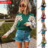 Frauen Designer Pullover Bunte Leoparden-Print O Neck Langarm Damen Pullover Wolle Winter Damen Kleidung