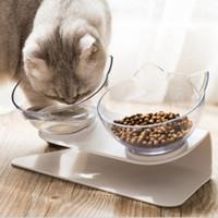 Doble gato perro cuencos alimento mascota agua cuenco antideslizante protección columna vertebral multiusos mascotas alimentación cuenco oceano buque caja paquete HAA1700