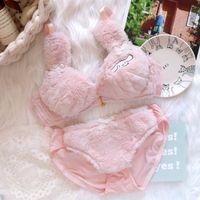 Super Kawaii Peluche Cinnamoroll Bra Culotte Set Japonais Jeune fille Hiver Chaud Sexy Lolita Lolita Mignon Rose Blanc Sous-vêtements Y1230