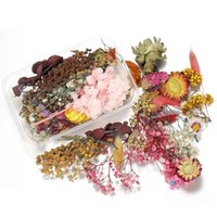 1box mélange de mélange style de style de fleurs séchées décoration naturelle autocollant floral beauté nage art décalques époxy moule bricolage bijoux h jllbse