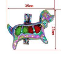 Reyow 5 шт. Цвет радуги щенок Peavy Pearl Coles Cale Cale Mocket Подвеска духи Эфирное масло диффузоруют ювелирные изделия, делающие ожерелье1