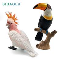 Oggetti decorativi figurine simulazione toucan cacatoo figura modello animale uccello pappagallo figurine home decor in miniatura fata giardino decorat