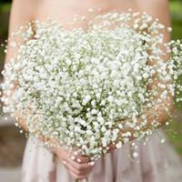 5 adet / grup Gypsophila Plastik Çiçekler Ev Dekoratif Diy Düğün Parti Yapay Çiçekler Dekorasyon Sahte Çiçek Gelin Buketi AL7689