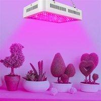 1000W 듀얼 칩 380-730nm 전체 빛 스펙트럼 LED 식물 성장 램프 화이트 상위 학년 소재 성장 조명 도매