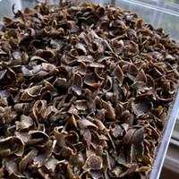 10G / Şişe Hakiki Çin Yeşil Kynam Oudh Dilimleri Kyara Chips Kinam Tam Yağ Doğal Kokulu Parfümler Güçlü Lazing Kokusu