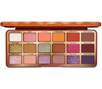 Nuovi 18 colori Zucca Eyeshadow Tavolozza Trucco Eye Shadow Christmas Classic Colors Spice Eye Eye Shadow Matte Shimmer Palette di alta qualità