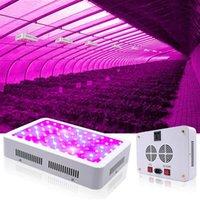 Vente chaude 1500W haute intensité de haute intensité LED Dual Chips 380-730nm Spectacle de lumière pleine lumineuse LED lampe de croissance de plante blanche poussoir