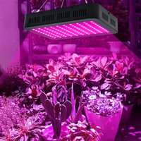 Vente en gros 1000W 100 * 10W Spectrum complet 3030 Lampe Perle Perle Lampe Simple Commande Noir Matériau Premium Noir Grow Lights