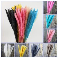 2021 New 15 PCS Natural Dried Pampas Grass Reed Home Wedding...